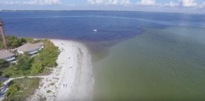 The release of dark, nutrient-laden freshwater into the Caloosahatchee River alleviates flooding at Lake Okeechobee but damages Florida's coastal communities. (Photo courtesty of Soaring Sky)